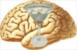 Cervello e Alcool:Chi avrà la meglio? 3
